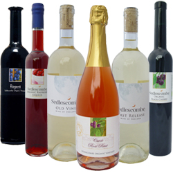 English-wine premium-taster-pack-n